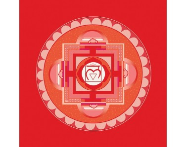 Sinergia Chakra 1. Muladhara